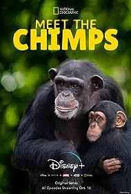 Meet the Chimps (2020)