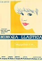 Mimoza llastica