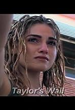 Taylor's Wall