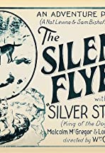 The Silent Flyer