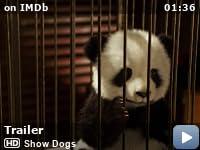 Show Dogs (2018) - IMDb