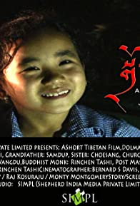 Primary photo for Dolma: a Tibetan Movie