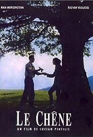 The Oak(1992) Poster - Movie Forum, Cast, Reviews
