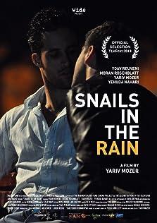 Snails in the Rain (2013)