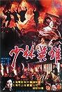 Shao Lin ying xiong zhi Feng Shi-Yu Hong Zhi-Guan (1994) Poster