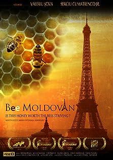 Bee Moldovan (2010)