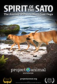 Primary photo for Spirit of the Sato: The Journey of Puerto Rico's Lost Dogs