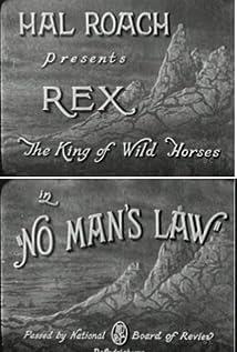 Rex Picture