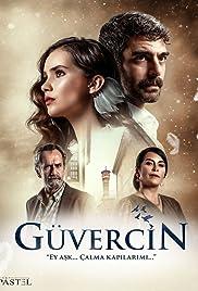 Guvercin Poster