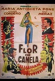 Flor de canela Poster