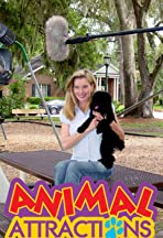 Animal Attractions TV