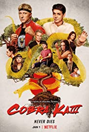 Cobra Kai Poster - TV Show Forum, Cast, Reviews