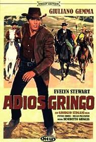Adiós gringo (1965) Poster - Movie Forum, Cast, Reviews