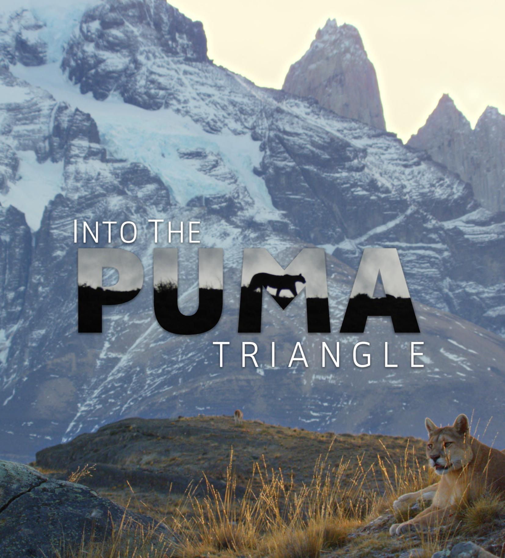 watch Into the Puma Triangle on soap2day