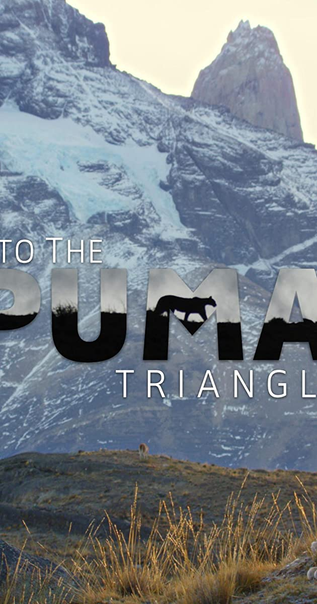 Into the Puma Triangle (2020)