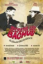 The Secret of Bacchus