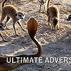 Ultimate Adversaries (2020)