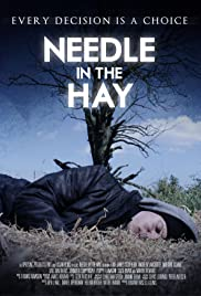 Needle in the Hay Poster