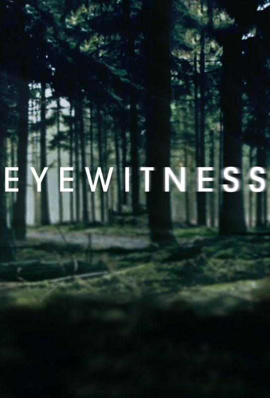 LIUDININKAS (1 Sezonas) / EYEWITNESS Season 1
