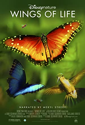 Where to stream Disneynature: Wings of Life