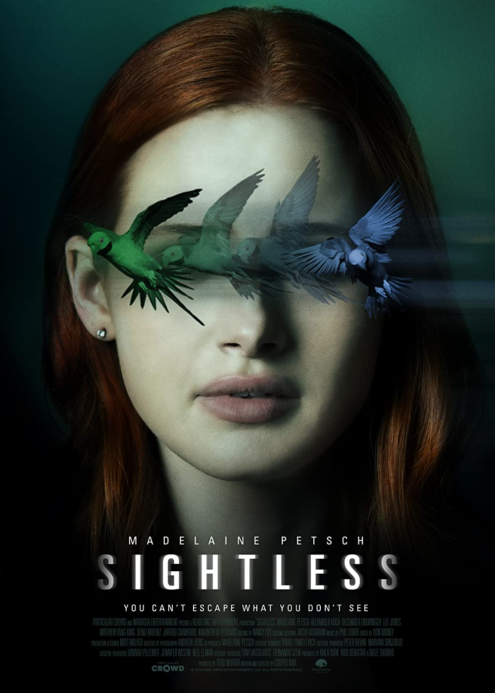 Sightless 2020 Hindi ORG Dual Audio 720p NF HDRip ESubs 650MB Download