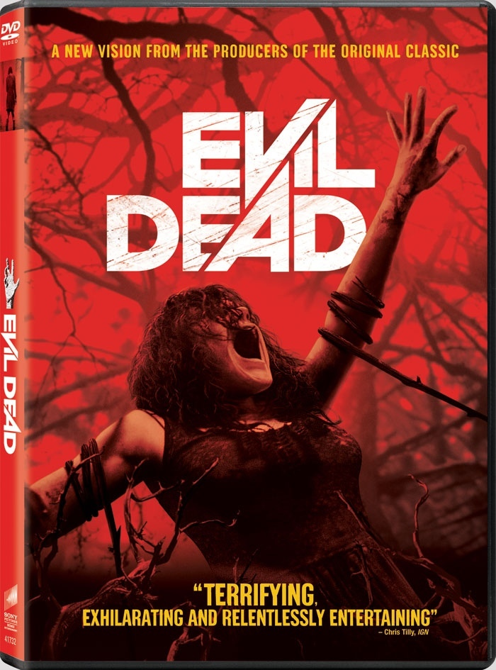 Evil Dead 2013 Hindi ORG Dual Audio 300MB BluRay ESubs Download