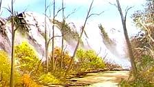 Arizona Splendor