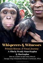 Whisperers and Witnesses: Primate Rescue, A Visual Journey