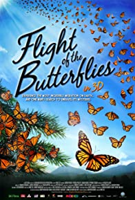 Primary photo for Flight of the Butterflies