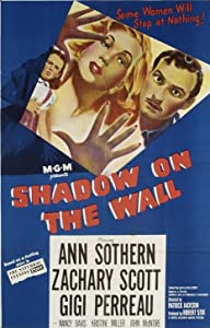Shadow on the Wall USA