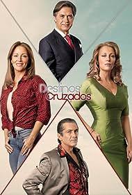 Virgílio Castelo, Alexandra Lencastre, and Nuno Homem de Sá in Destinos Cruzados (2013)
