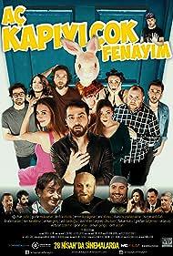 Ac kapiyi cok fenayim (2017)