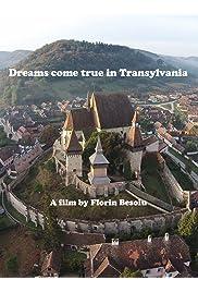 Zuwanderung nach Siebenbürgen. Erfolgsgeschichten (Dreams come true in Transylvania)
