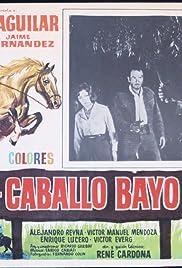 El caballo Bayo Poster