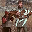 Wayne Rogers in M*A*S*H (1972)