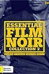 Essential Film Noir Collection 2