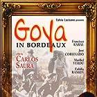 Goya en Burdeos (1999)