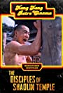 Disciples of Shaolin Temple