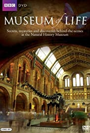 Museum of Life Poster