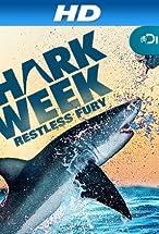 Primary image for Sharkbite Beach