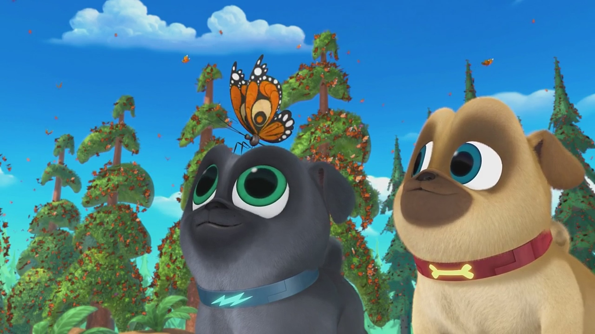 Puppy Dog Pals A Seat At The Theatre Bye Bye Butterfly Tv Episode