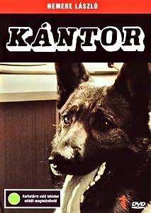 Watch free adult movie Kántor: Havas történet (1976)  [mpg] [320p] [h.264]