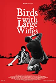 Birds with Large Wings Poster