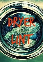 Dryer Lint