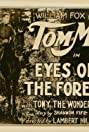 Eyes of the Forest (1923) Poster