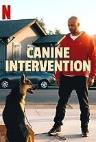 Canine Intervention