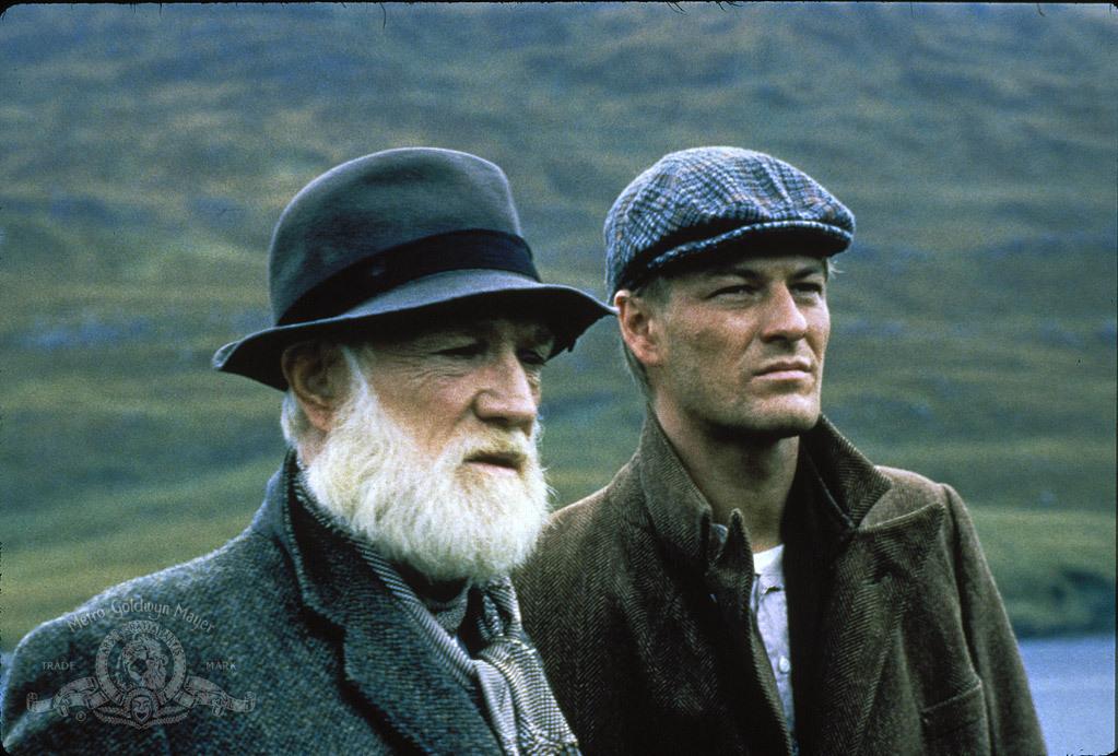 The Field (1990) - IMDb