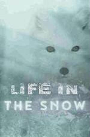 Life in the Snow