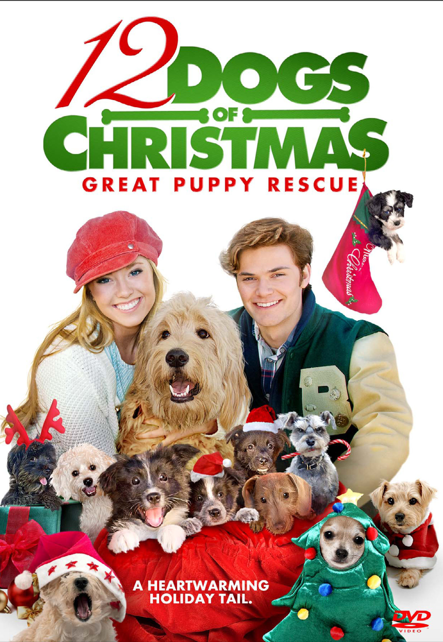 12 Dogs Of Christmas.12 Dogs Of Christmas Great Puppy Rescue 2012 Imdb