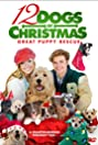 12 Dogs of Christmas: Great Puppy Rescue (2012) Poster
